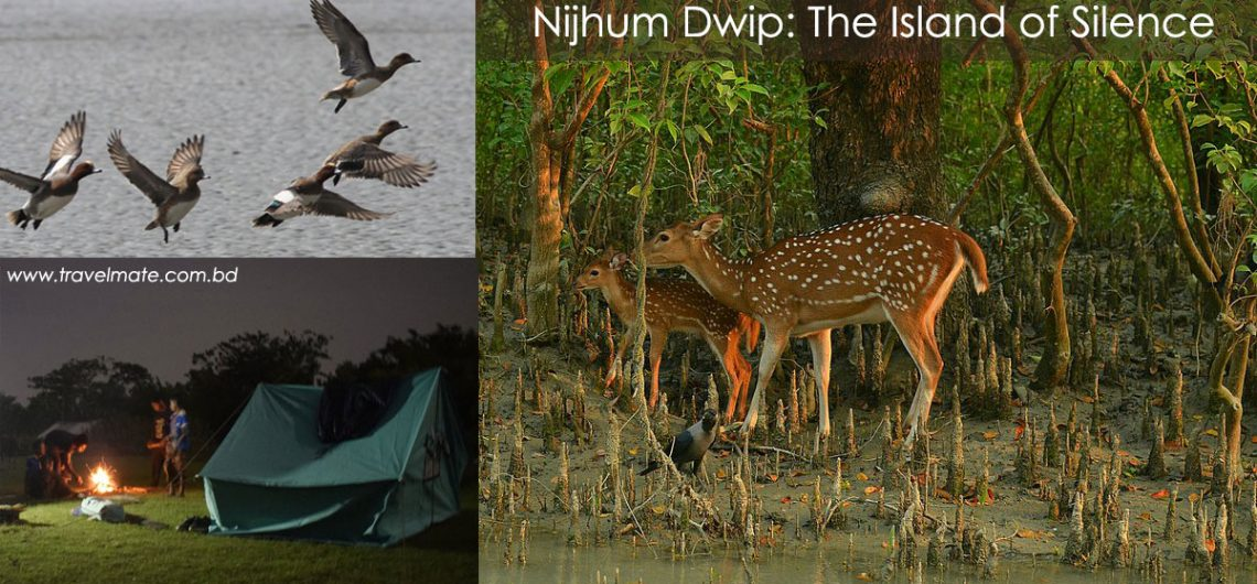Nijhum Dwip : The Island of Silence