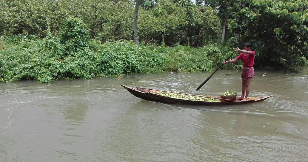 Floating Guava Market 2