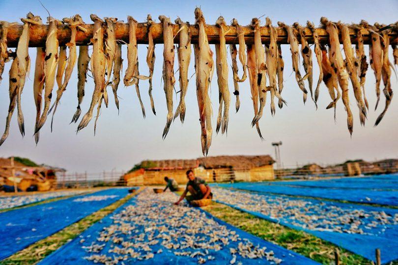 Dublar Char Dry Fish