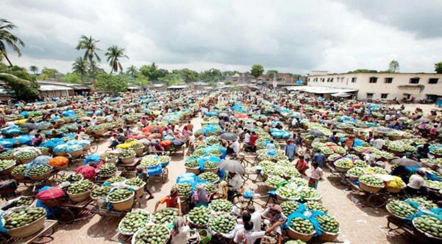 Kansat Mango Market chapainawabganj