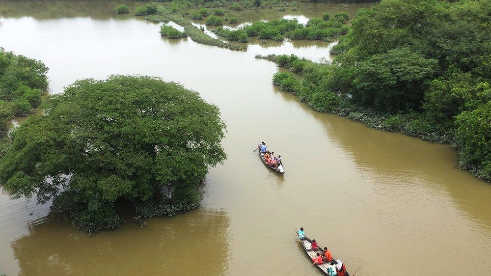 Ratargul Swamp Forest
