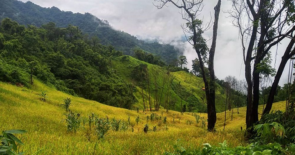 Top 10 Mountains in Bangladesh, You Shouldn't Miss