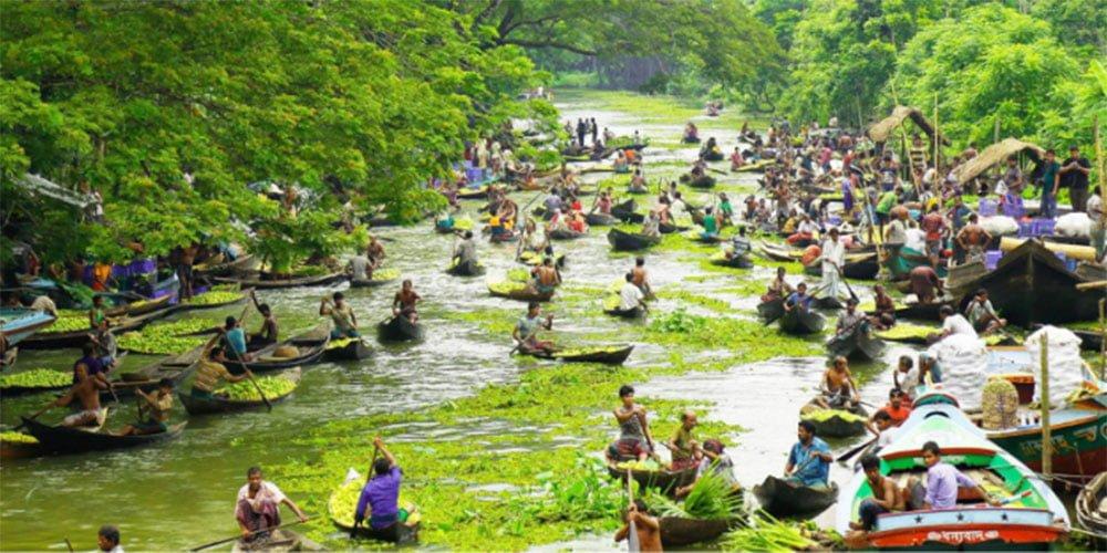 Floating Guava Market-Guava-Market