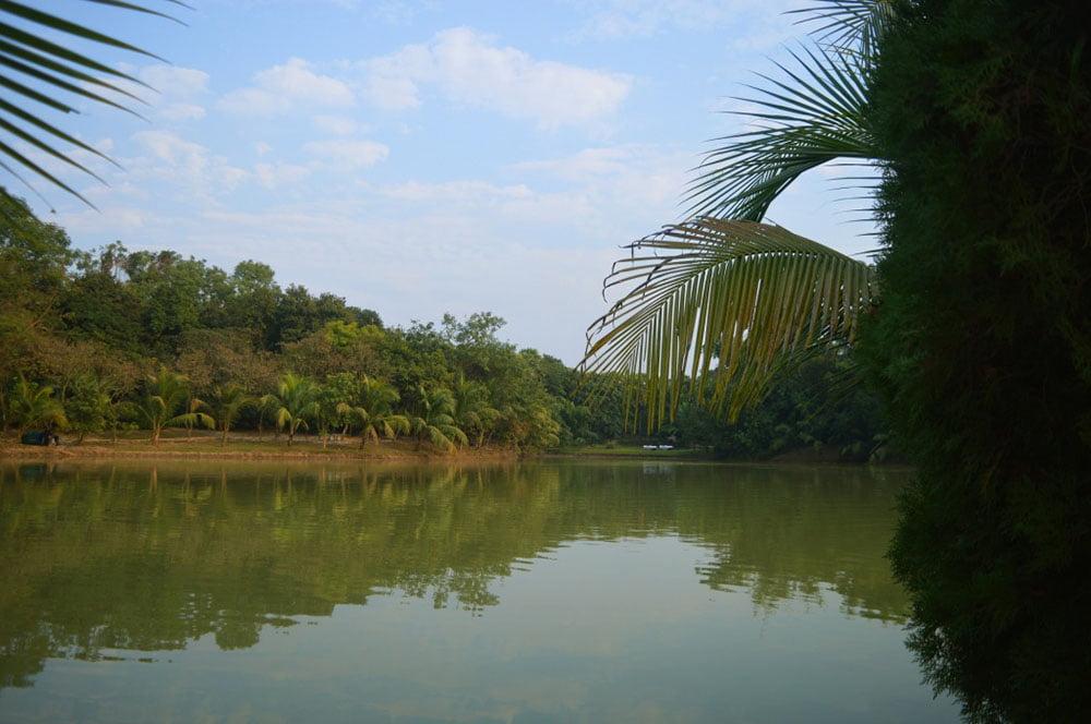 Zinda Park Lake