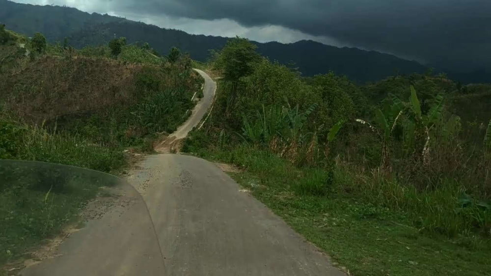 Dim Hills